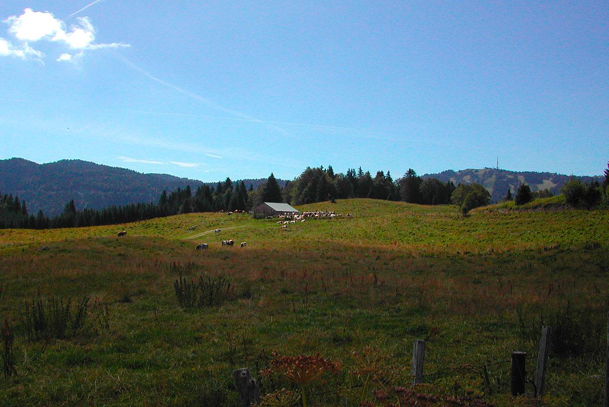 © Jean Noel Coste Haut-Jura Saint-Claude - Chalet d'alpage de la Regarde accueillant les Pérégrinations poétiques 2016 face à la haute-chaîne du Jura (La Faucille en vis à vis)