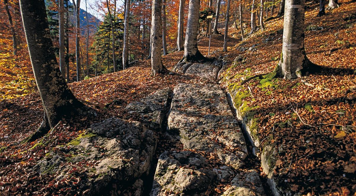 Via Salina: chemin pédestre, Vuiteboeuf – © Heinz Dieter Finck, ViaStoria