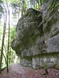 Le-Doubs-entre-Les-Brenets-et-Maison-Monsieur_4